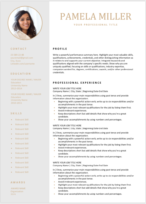 editable resume light gray min 2