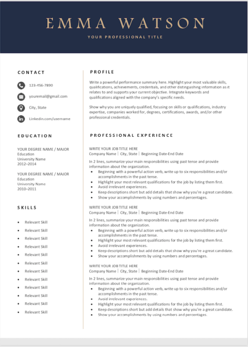 resume template navi s