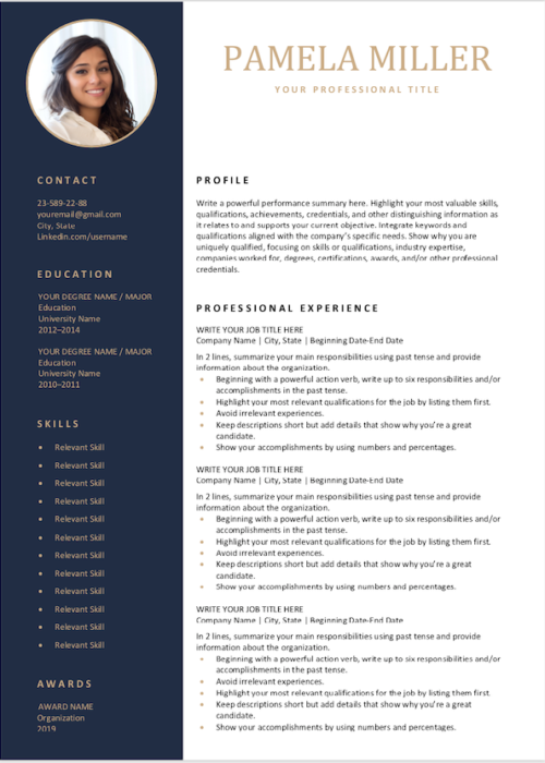 editable resume navi min